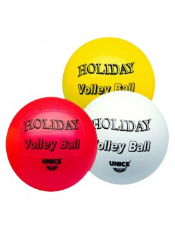Pilota Volley holiday