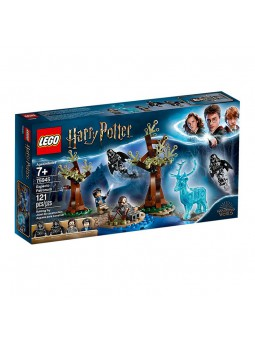 LEGO® Harry Potter Expecto...