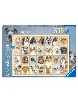 Puzle de retrats de gossos 500 peces